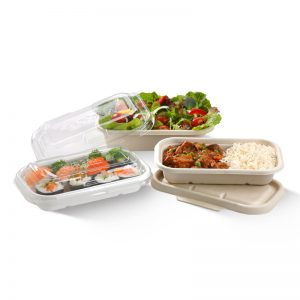 Bio Bowls, Sugarcane, Plates and Takeaway Food Packaging